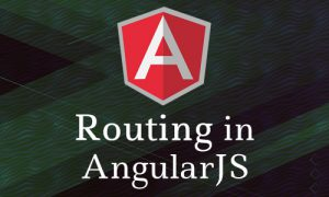 routing in Angjs